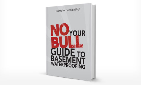 Basement Waterproofing E-Book